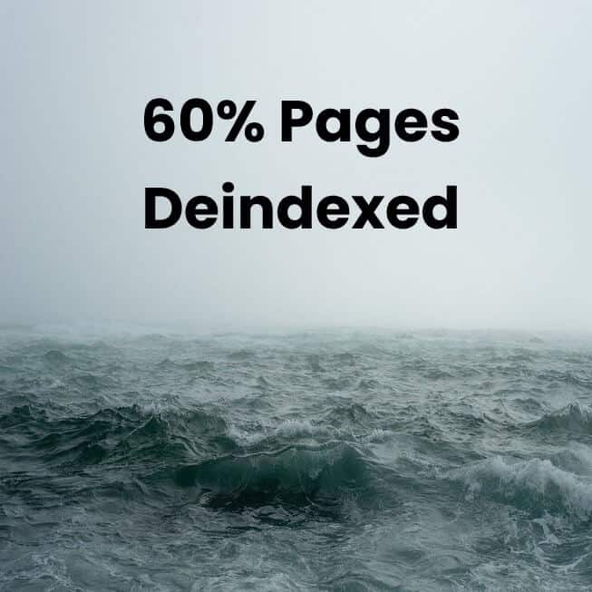 60% pages were deindexed in the search results